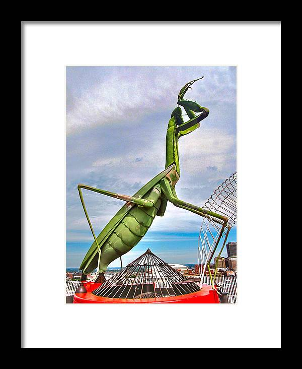 Grasshopper Framed Print featuring the photograph Here They Come by C H Apperson