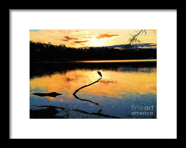 Heron Framed Print featuring the photograph Heron at sunset by Sheila Smart Fine Art Photography