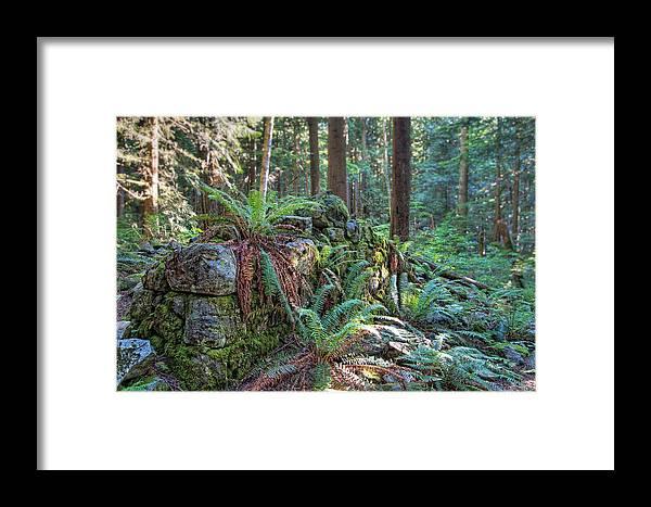 Beautiful Framed Print featuring the photograph Hidden Rock Wall by James Wheeler