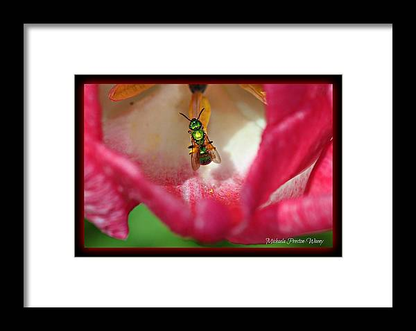 Nature Framed Print featuring the photograph Hiding by Michaela Preston