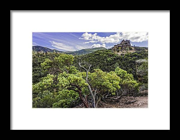 Pinnacles National Monument Framed Print featuring the photograph High Peaks Trail View by Bill Boehm