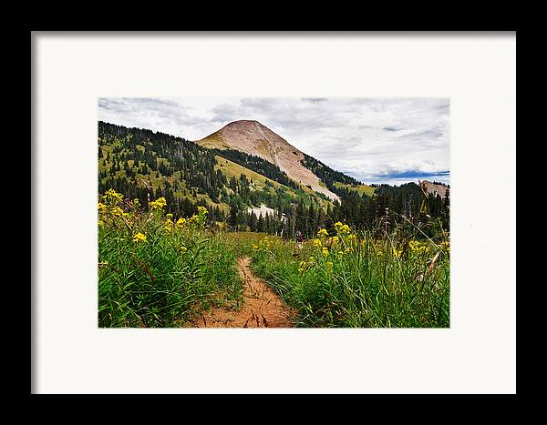 3scape Photos Framed Print featuring the photograph Hiking In La Sal by Adam Romanowicz