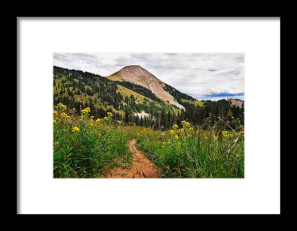 3scape Framed Print featuring the photograph Hiking In La Sal by Adam Romanowicz