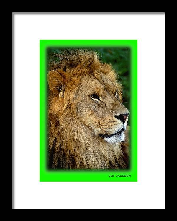 Wildlife Framed Print featuring the digital art His Majesty by Clif Jackson