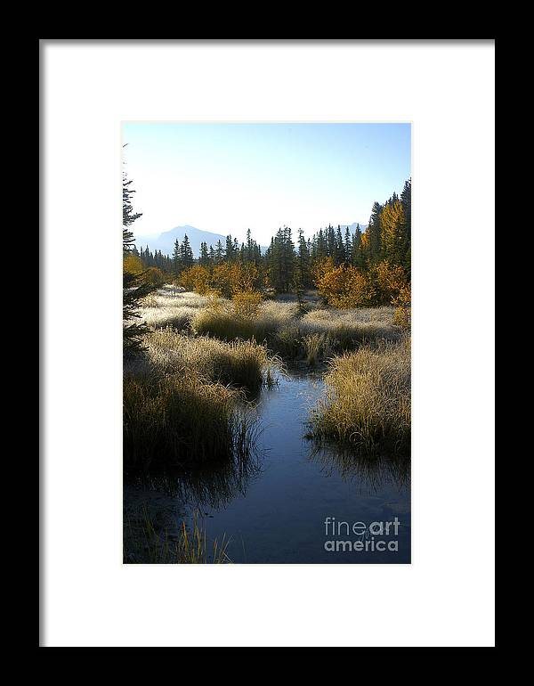 Canada Framed Print featuring the photograph Hoar Frost And Stream by Jessie Parker