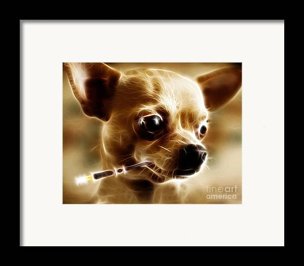 Animal Framed Print featuring the photograph Hollywood Fifi Chika Chihuahua - Electric Art by Wingsdomain Art and Photography