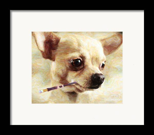 Animal Framed Print featuring the photograph Hollywood Fifi Chika Chihuahua - Painterly by Wingsdomain Art and Photography