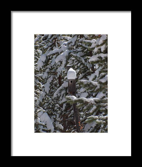 Snowy Scene Framed Print featuring the photograph Home Sweet Home by Susan Chesnut