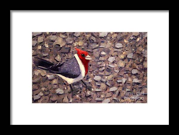 Bird Framed Print featuring the painting Home Turf by Laurie Morgan