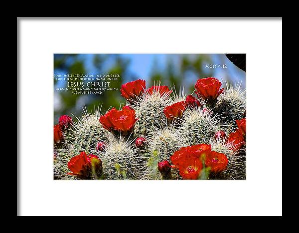 God Framed Print featuring the photograph Honor His Sacrifice by David Norman