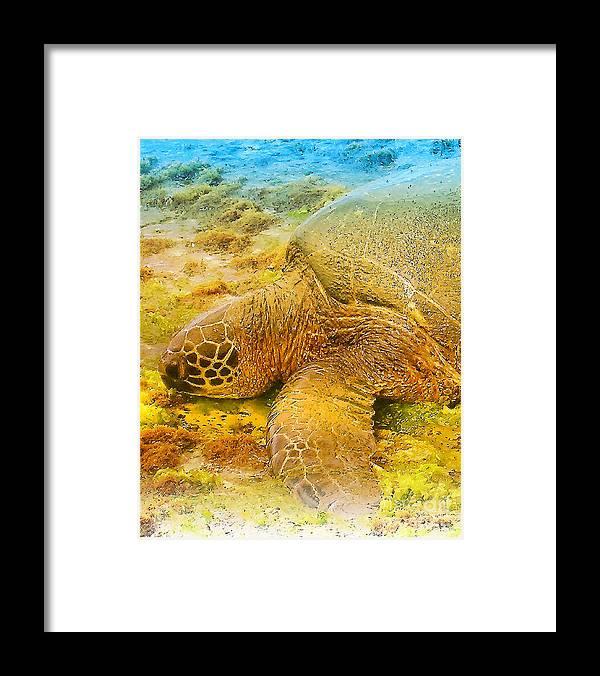 Hawaii Framed Print featuring the digital art Honu Sea Turtle by Dorlea Ho