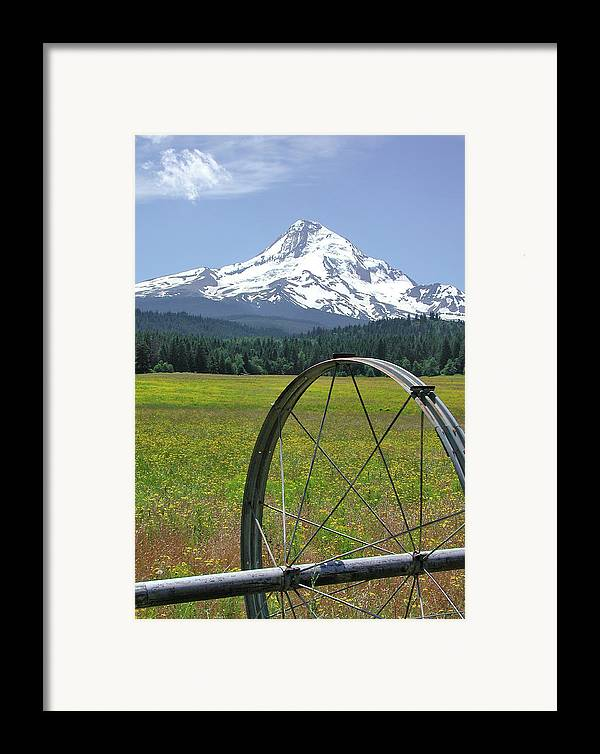 Landscape Framed Print featuring the photograph Hood Meadow by Arthur Fix