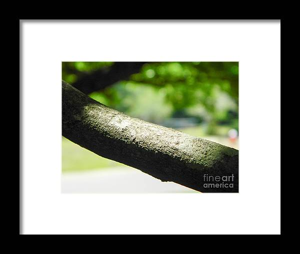 Hope Framed Print featuring the photograph Hope by Andrea Anderegg