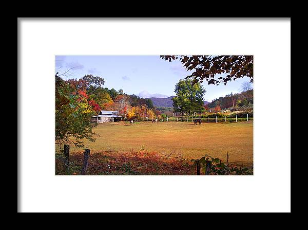 Duane Mccullough Framed Print featuring the photograph Horses And Barn In The Fall 4 by Duane McCullough