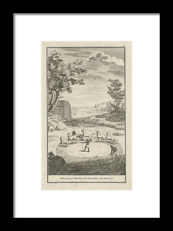 1727 Framed Print featuring the drawing Hottentots Threshing, Jan Caspar Philips by Quint Lox