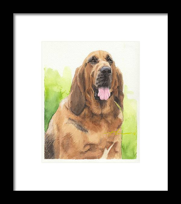 <a Href=http://miketheuer.com Target =_blank>www.miketheuer.com</a> Hound Dog Watercolor Portrait Framed Print featuring the drawing Hound Dog Watercolor Portrait by Mike Theuer