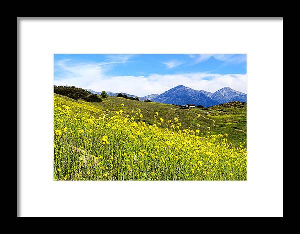 Weeds.grass Framed Print featuring the photograph House On The Hill by Camille Lopez