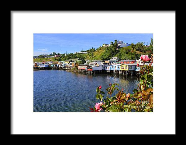 Chiloe Framed Print featuring the photograph Houses On Stilts by Maxine Kamin