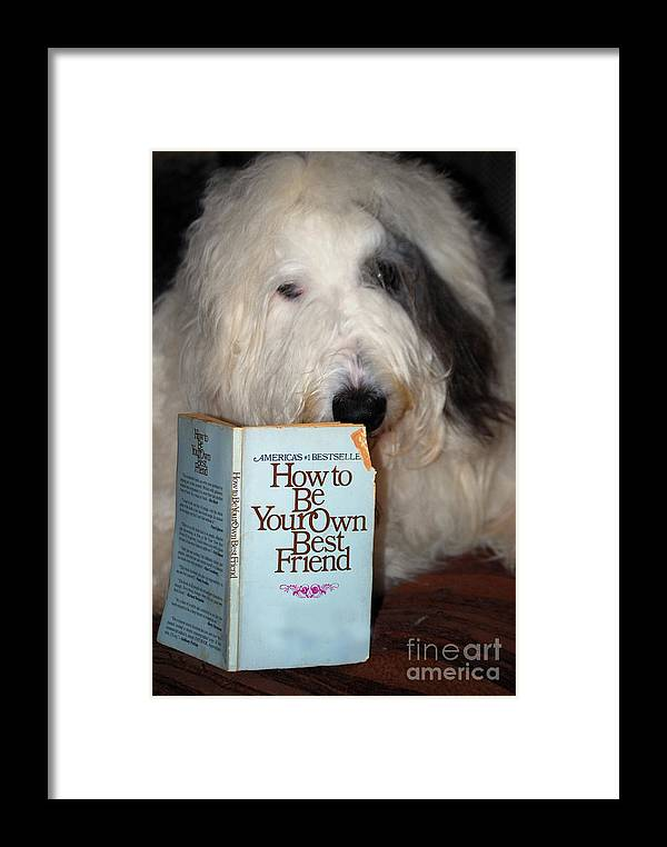 Dog Framed Print featuring the painting How To Be Your Own Best Friend by Nancy Bradley