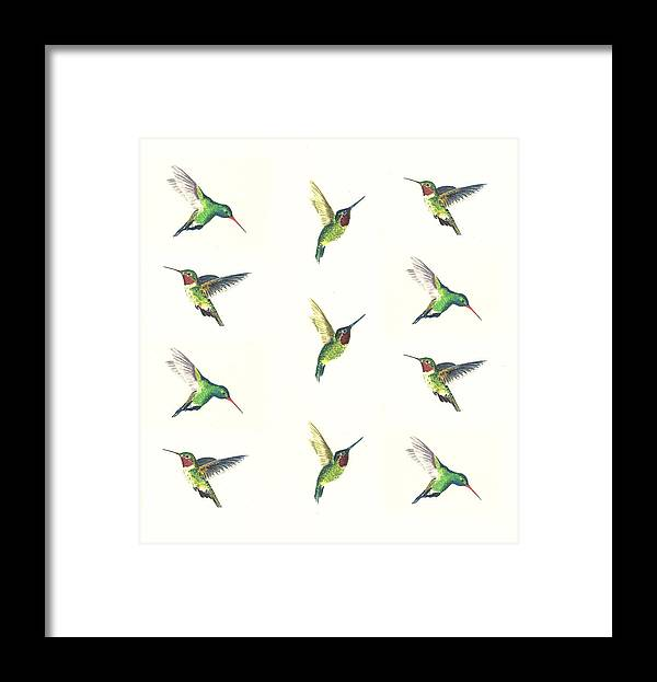 Animals Framed Print featuring the painting Hummingbirds Number 2 by Michael Vigliotti
