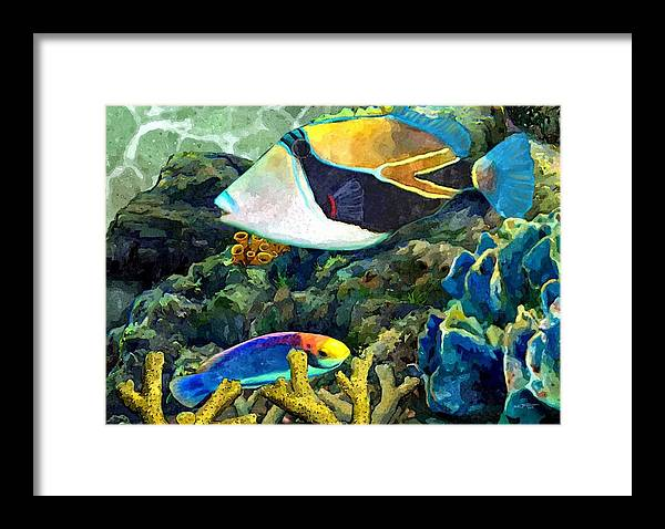 Hawaiian Fish Framed Print Featuring The Painting Humuhumu And A Wrasse By Stephen Jorgensen