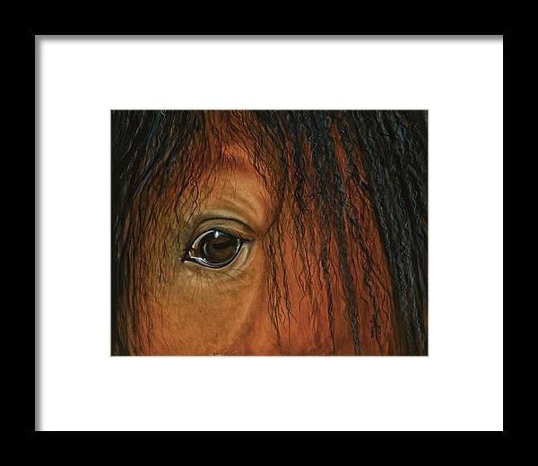 Equine Art Framed Print featuring the painting I Am Spartacus by Debra Sue Waters
