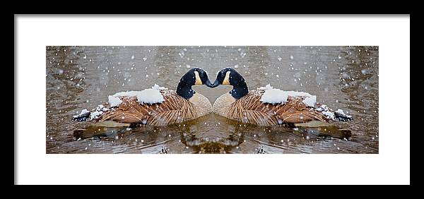 Canadian Framed Print featuring the photograph I Heart You by Betsy Knapp
