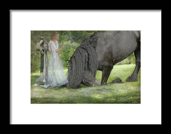 Horses Framed Print featuring the photograph I Miss You by Fran J Scott