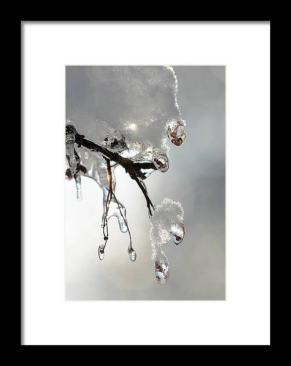 Ice Framed Print featuring the photograph Ice And Snow-5739 by Steve Somerville