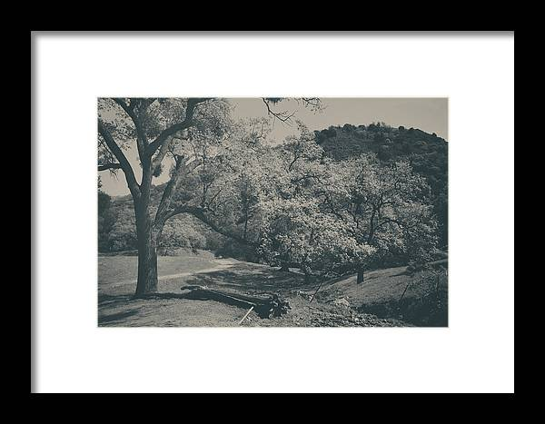 Sunol Regional Wilderness Framed Print featuring the photograph If You Get Lonely by Laurie Search