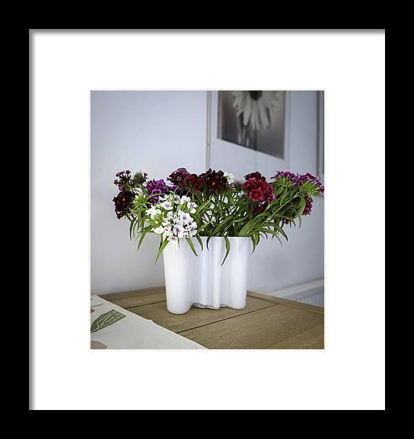 Iittala Vase 7 Flowers Framed Print By Neville Barber