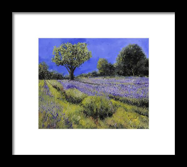 Lavender Framed Print featuring the painting Il Campo Di Lavanda by Guido Borelli