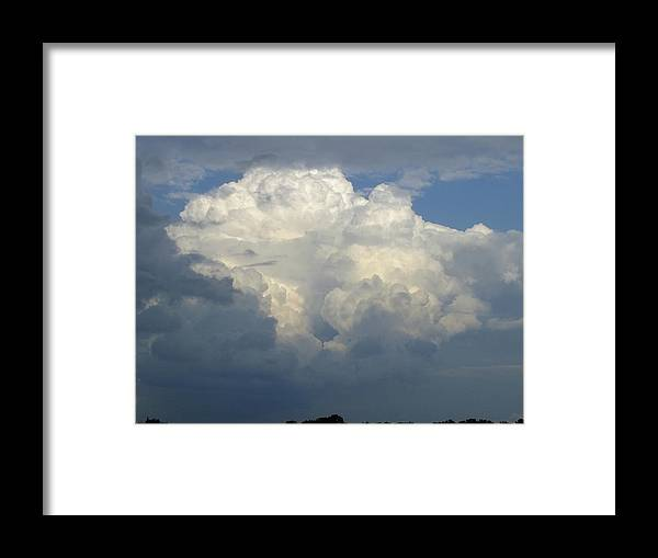Nature Framed Print featuring the photograph Illuminated by Peggy King