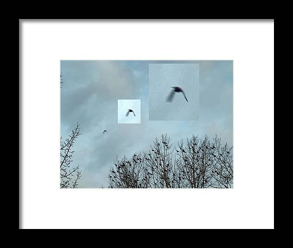 Unknown Framed Print featuring the photograph Illusive Unknown Flyer by Vaswaith Elengwin