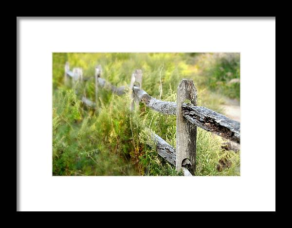 Landscape Framed Print featuring the photograph I'm Home by Diana Angstadt