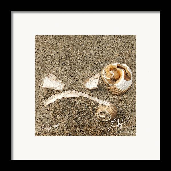 Fossils From Capitola Beach Framed Print featuring the photograph In A Forgotten Time by Artist and Photographer Laura Wrede