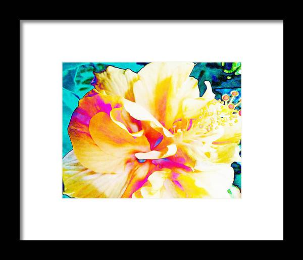 Bright Framed Print featuring the photograph In Color by Debra Wynn