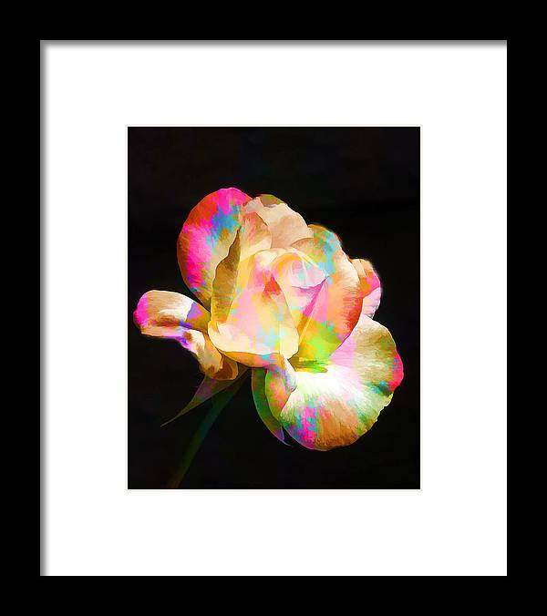 Flower Framed Print featuring the photograph In Full Color by Diane Wood