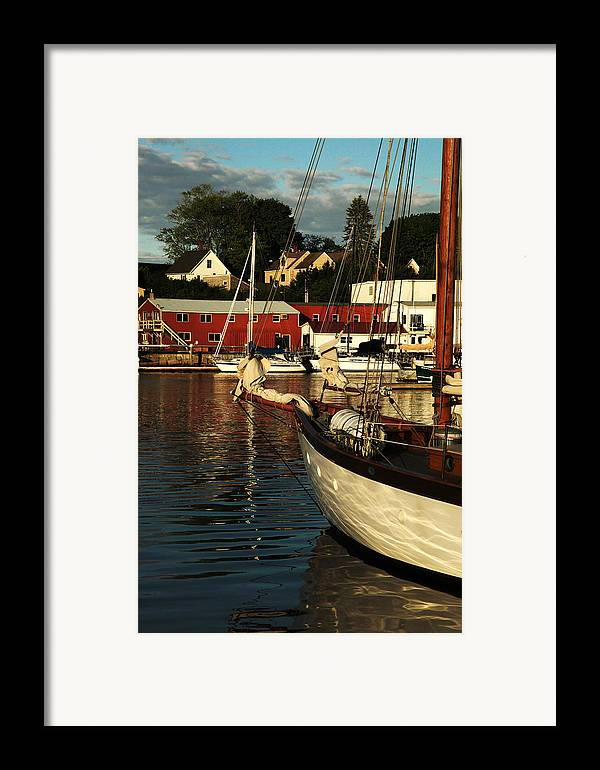 Harbor Framed Print featuring the photograph In Harbor by Karol Livote