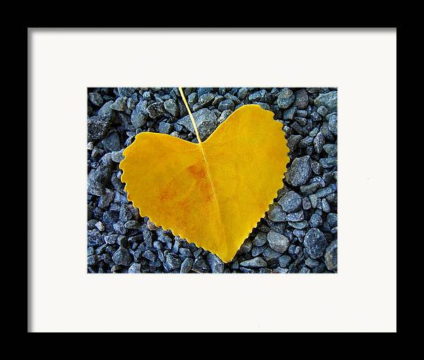 Love Framed Print featuring the photograph In Love ... by Juergen Weiss