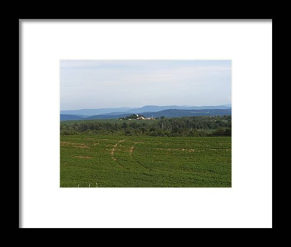Nature Framed Print featuring the photograph In The Distance by Laura Gillmer