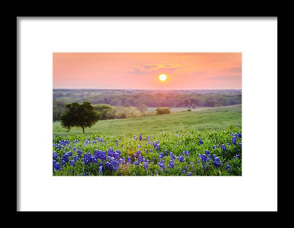 Sunset Framed Print featuring the photograph In The End by Pooja Gulati