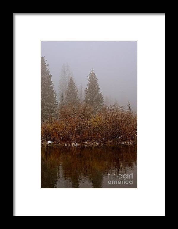 Fog Framed Print featuring the photograph In The Misty Morning by Susan Chesnut