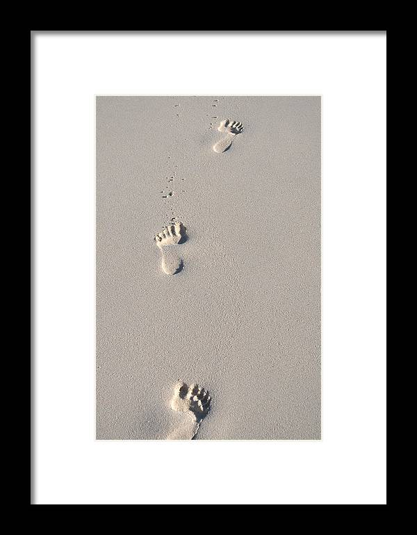Beaches Framed Print featuring the photograph In The Sand by Caroline Stella
