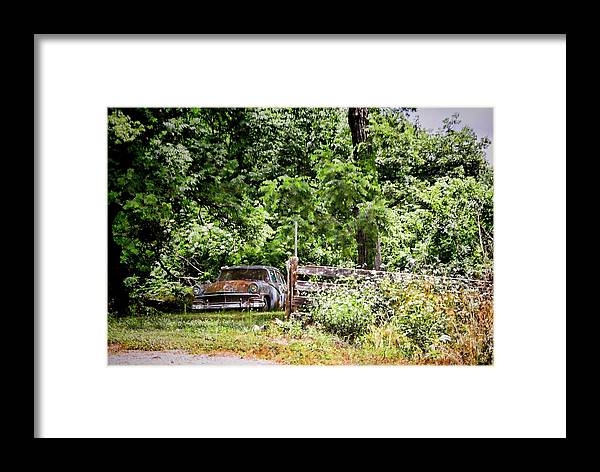 Trees Framed Print featuring the photograph In The Shade by Audreen Gieger