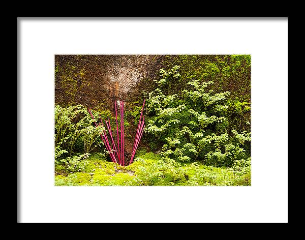 Red Framed Print featuring the photograph Incense 06 by Rick Piper Photography