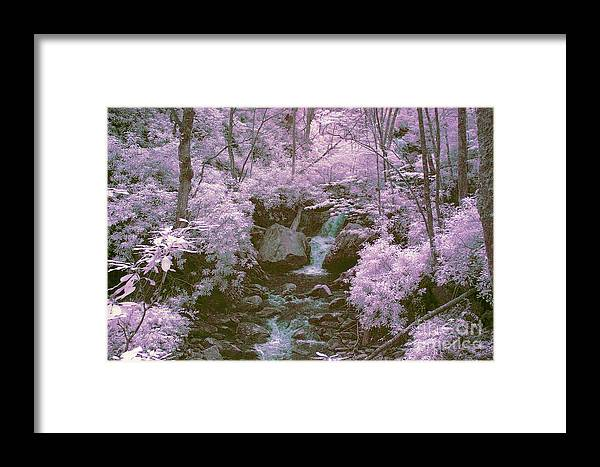 Ir Framed Print featuring the photograph Infrared Mountain Stream by Paul W Faust - Impressions of Light