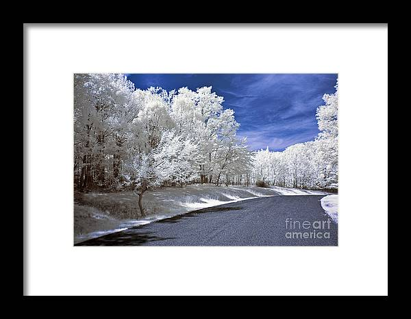 Landscape Framed Print featuring the photograph Infrared Road by Anthony Sacco