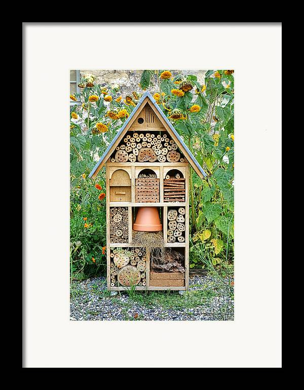 Craftsman Framed Print featuring the photograph Insect Hotel by Olivier Le Queinec