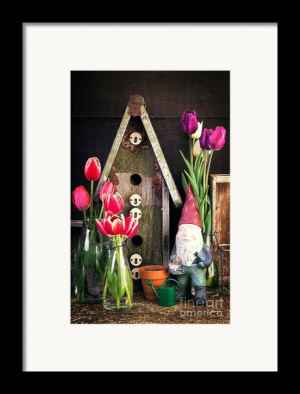 Barn Framed Print featuring the photograph Inside The Potting Shed by Edward Fielding
